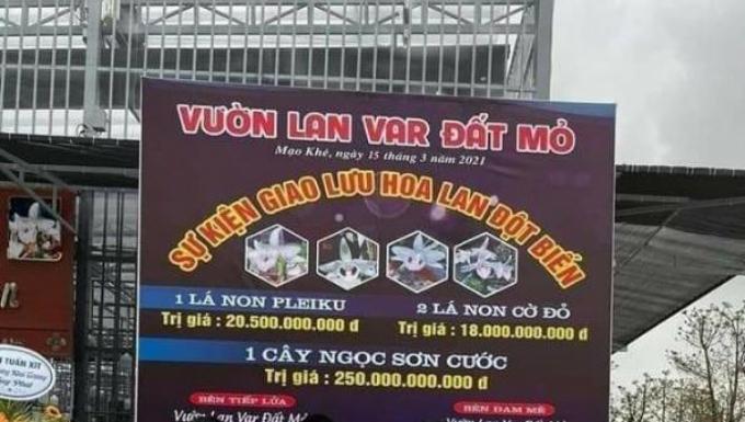 Công an Quảng Ninh xác minh vụ giao dịch lan đột biến hàng trăm tỷ