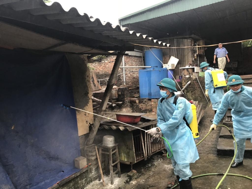 Hà Nội đẩy mạnh công tác phòng chống dịch trên đàn vật nuôi