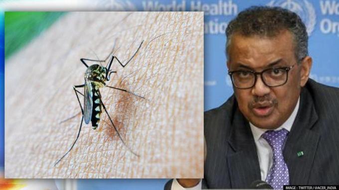 WHO phê duyệt vaccine ngừa sốt rét đầu tiên trên thế giới