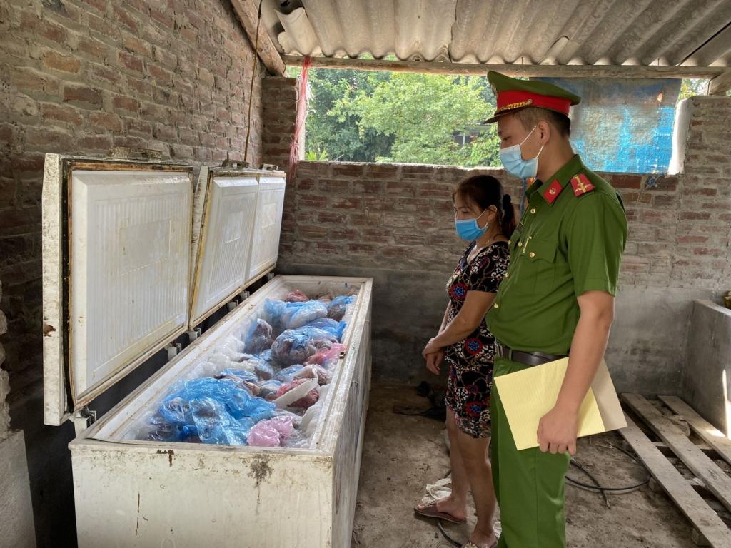 Bắc Giang: Phát hiện, xử lý đối tượng chuẩn bị tiêu thụ gần 1 tấn thịt lợn nhiễm dịch tả lợn Châu Phi