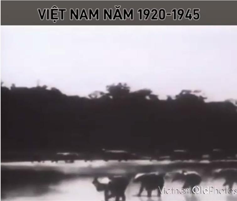 Việt Nam khoảng những năm 1920-1945